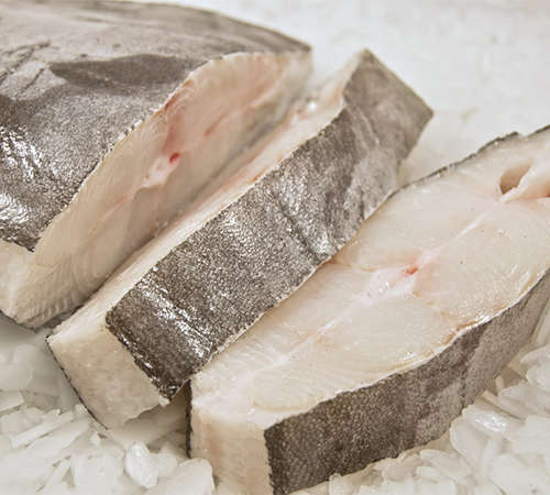 Fresh halibut on ice
