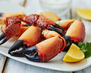 Stone crabs with lemon on white plate